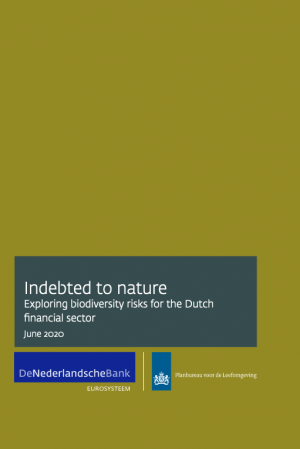 Indebted to Nature report cover