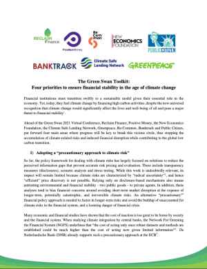 Green Swan Toolkit report cover