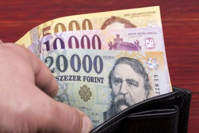 Hungarian florint notes in a wallet