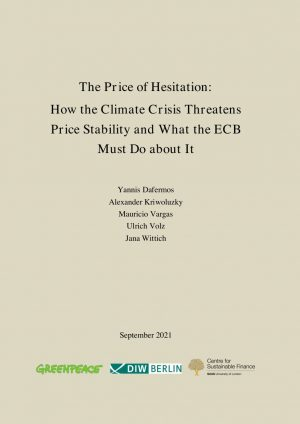 The Price of Hesitation cover